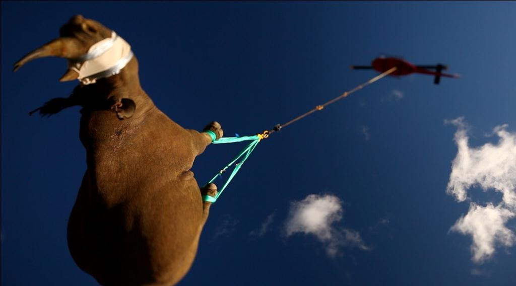 © Michael Raimondo / WWF