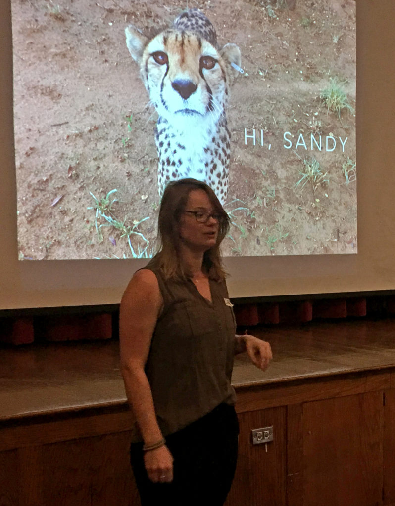 Kate Vannelli of Global Conservation Corps stands before a projection screen with the image of a cheetah behind her.